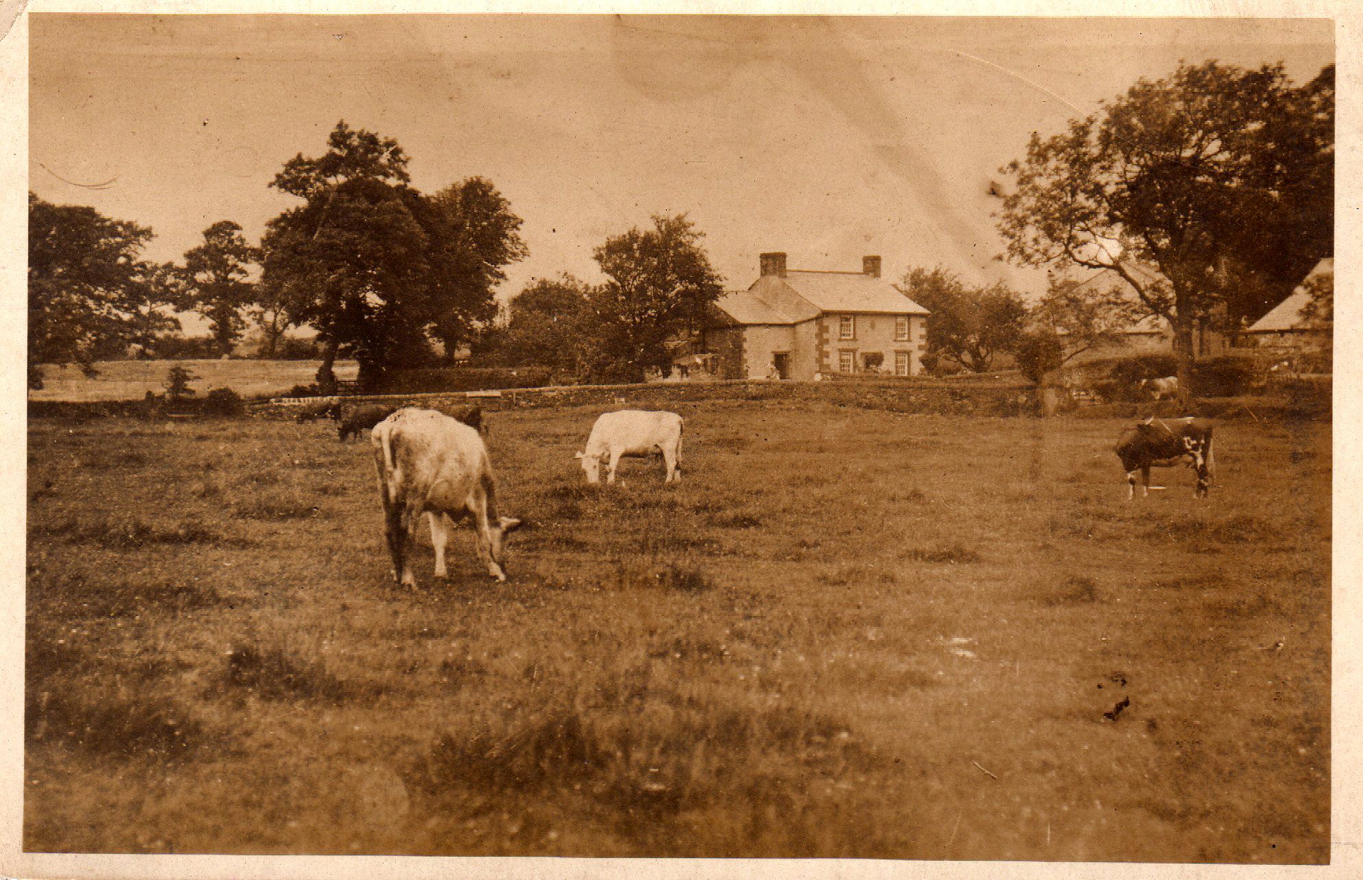 Pale Farm Chipping 1913