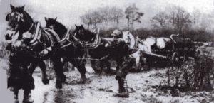 Cart Horses, Sniggers