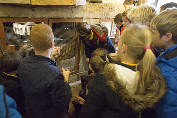 Checking out the inner workings of the Corn Mill