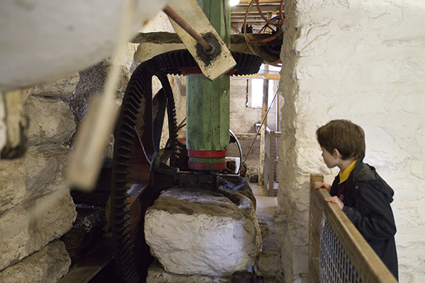 The mechanism that drives the waterwheel